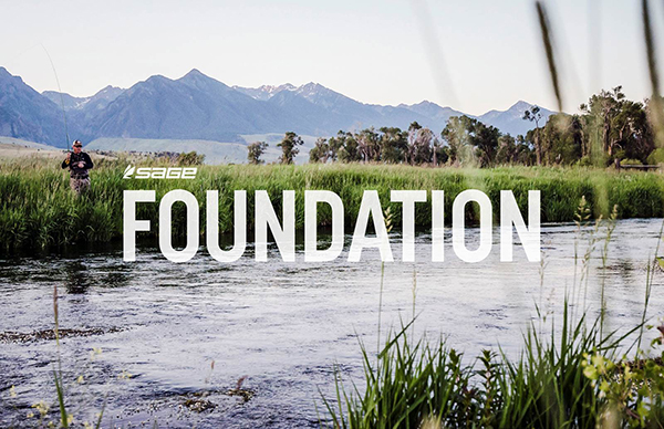 600-sage-foundation-banner