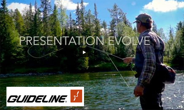 Guideline-Presentation-Evolve-Promo