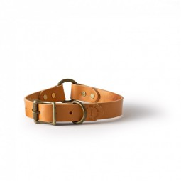 Filson Dog Collar ( Art.-Nr. 90101 ) Hundehalsband