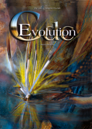 Mauro Raspini: CDC Evolution